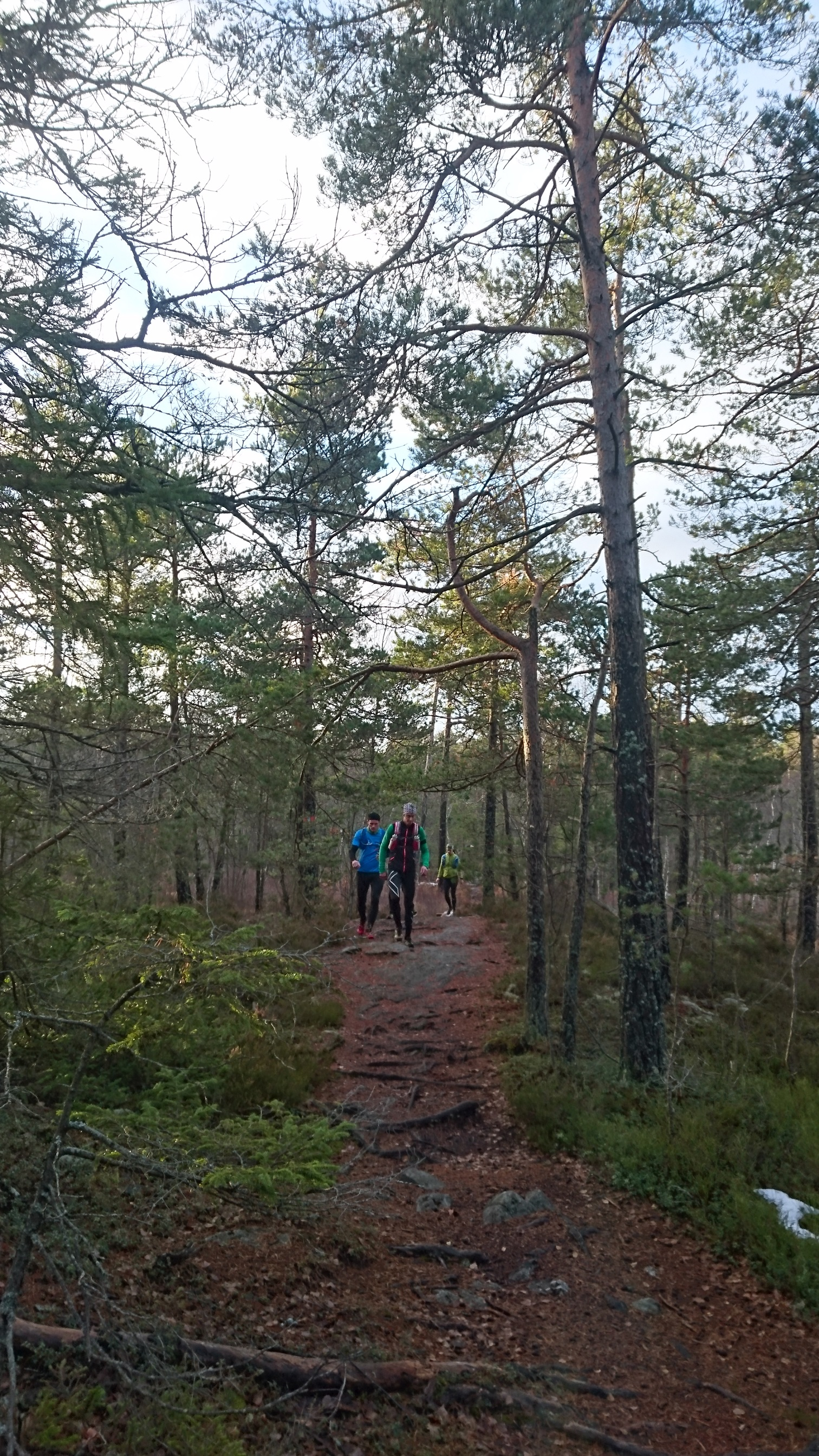 November Ultra Trail Södertörn 2016.